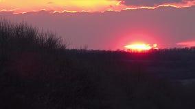 Φυσικό όμορφο ηλιοβασίλεμα απόθεμα βίντεο