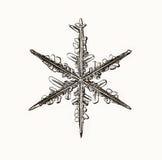 Φυσικό snowflake κρυστάλλου μακρο κομμάτι του πάγου Στοκ εικόνα με δικαίωμα ελεύθερης χρήσης