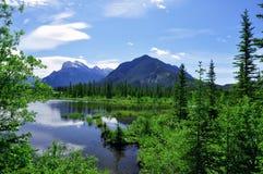 φυσικό vista βουνών Στοκ Εικόνα