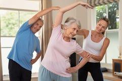 Φυσιοθεραπευτής που βοηθά την ανώτερη άσκηση ζευγών στοκ εικόνες