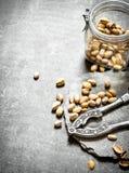 Φυστίκια στο βάζο με τον καρυοθραύστης Στοκ φωτογραφίες με δικαίωμα ελεύθερης χρήσης