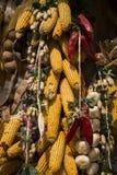 Φυστίκι αραβόσιτου και πιπέρι σκόρδου Στοκ εικόνα με δικαίωμα ελεύθερης χρήσης