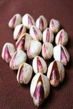 φυστίκι καρυδιών Στοκ εικόνες με δικαίωμα ελεύθερης χρήσης