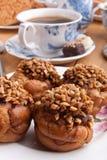 φυστίκι φουντουκιών καφέ στοκ φωτογραφία