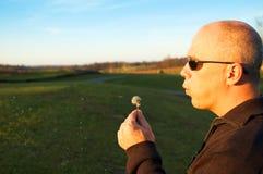 φυσώντας άτομο πικραλίδων Στοκ φωτογραφία με δικαίωμα ελεύθερης χρήσης