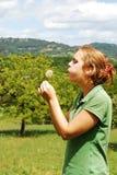 φυσώντας γυναίκα πικραλί&d Στοκ Φωτογραφίες