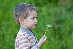 φυσώντας κατσίκι πικραλί&del Στοκ Φωτογραφίες