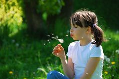 φυσώντας κορίτσι πικραλίδων Στοκ φωτογραφία με δικαίωμα ελεύθερης χρήσης