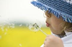 φυσώντας κορίτσι πικραλί&del Στοκ Εικόνες