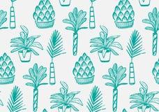 Φυτά γλαστρών καθορισμένα Στοκ Εικόνες
