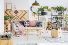 Φυτά στο καθιστικό Στοκ φωτογραφία με δικαίωμα ελεύθερης χρήσης