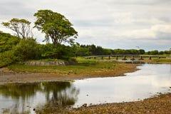 φυτίλι ποταμών Στοκ Φωτογραφίες