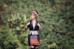 Φυτεία καφέ φυλής Hill, γυναίκα Akha που επιλέγει τον κόκκινο καφέ στην ανθοδέσμη στο δέντρο Στοκ Εικόνες