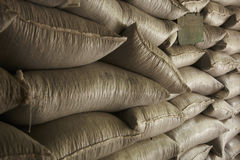 Φυτεία καφέ, Boquete, Panama21 Στοκ Φωτογραφίες