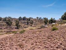 Φυτεία καλαμποκιού στη λίμνη Titicaca από το νησί Taquile Στοκ εικόνα με δικαίωμα ελεύθερης χρήσης