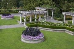 Φυτεία με τριανταφυλλιές Στοκ εικόνες με δικαίωμα ελεύθερης χρήσης