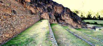 Φυτεία Incan Στοκ εικόνες με δικαίωμα ελεύθερης χρήσης