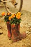 Φυτευμένες μπότες Στοκ εικόνα με δικαίωμα ελεύθερης χρήσης