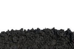 Φυτεύοντας τα δέντρα στο έδαφος το περιβάλλον και η οικολογία στοκ εικόνα