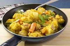 Φυτικά ινδικά τρόφιμα κάρρυ Στοκ εικόνα με δικαίωμα ελεύθερης χρήσης