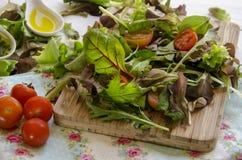 Φυτικά πράσινα σαλάτας Στοκ Εικόνες