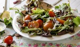Φυτικά πράσινα σαλάτας Στοκ Φωτογραφία