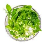 Φυτικά πράσινα φύλλα σαλάτας, μίγμα στοκ φωτογραφία