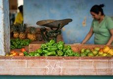 Φυτική αγορά με τα μικτά φρούτα και λαχανικά Στοκ Εικόνες