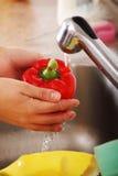 φυτική γυναίκα πλύσης Στοκ φωτογραφίες με δικαίωμα ελεύθερης χρήσης