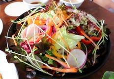 Φυτική σαλάτα ή μικτή σαλάτα Στοκ εικόνα με δικαίωμα ελεύθερης χρήσης