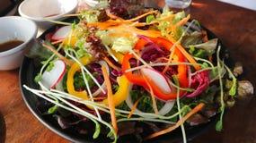 Φυτική σαλάτα ή μικτή σαλάτα Στοκ Εικόνες