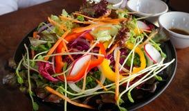 Φυτική σαλάτα ή μικτή σαλάτα Στοκ φωτογραφίες με δικαίωμα ελεύθερης χρήσης
