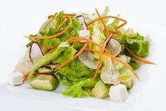 Φυτική σαλάτα με το ραδίκι και αβοκάντο σε ένα άσπρο πιάτο στοκ φωτογραφίες