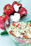Φυτική σαλάτα Στοκ Εικόνα
