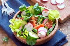 Φυτική σαλάτα άνοιξη Στοκ φωτογραφία με δικαίωμα ελεύθερης χρήσης