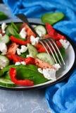 Φυτική σαλάτα με τις ντομάτες, το σπανάκι και τα πιπέρια Στοκ εικόνα με δικαίωμα ελεύθερης χρήσης
