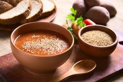 Φυτική σούπα κρέμας με το σουσάμι Στοκ φωτογραφία με δικαίωμα ελεύθερης χρήσης