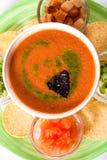 Φυτική σούπα Στοκ φωτογραφία με δικαίωμα ελεύθερης χρήσης