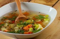 Φυτική σούπα Στοκ φωτογραφίες με δικαίωμα ελεύθερης χρήσης