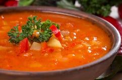 Φυτική σούπα στοκ εικόνες με δικαίωμα ελεύθερης χρήσης