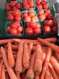 Φυτική στάση στην αγορά των στο κέντρο της πόλης αγροτών του San Jose Στοκ εικόνες με δικαίωμα ελεύθερης χρήσης