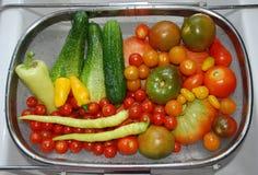 Φυτική συγκομιδή στο νεροχύτη κουζινών Στοκ Εικόνα