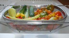 Φυτική συγκομιδή στο νεροχύτη κουζινών Στοκ φωτογραφίες με δικαίωμα ελεύθερης χρήσης