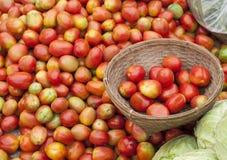 Φυτική, υπαίθρια αγορά, ντομάτες Στοκ Εικόνες