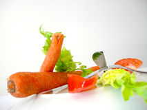 φυτικοί χορτοφάγοι μιγμάτων Στοκ εικόνες με δικαίωμα ελεύθερης χρήσης