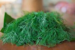 Φυτικός οργανικός άνηθος άνηθου φύσης φρέσκος πράσινος στοκ φωτογραφίες με δικαίωμα ελεύθερης χρήσης