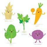 Φυτικό διάνυσμα κορίανδρου λάχανων του Kale καρότων βλαστών μπαμπού κινούμενων σχεδίων χαριτωμένο καθορισμένο Στοκ Εικόνες