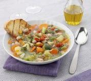 φυτικό λευκό σούπας πιάτω& στοκ φωτογραφίες με δικαίωμα ελεύθερης χρήσης