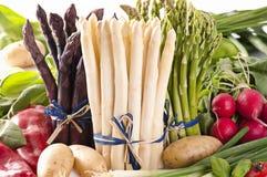 Φυτικό μίγμα Στοκ εικόνα με δικαίωμα ελεύθερης χρήσης