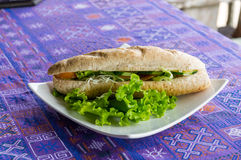 Φυτικό Baguette sandwish Στοκ Εικόνες